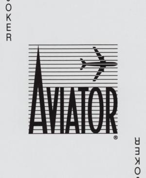 Aviator-Bee-Taily Ho